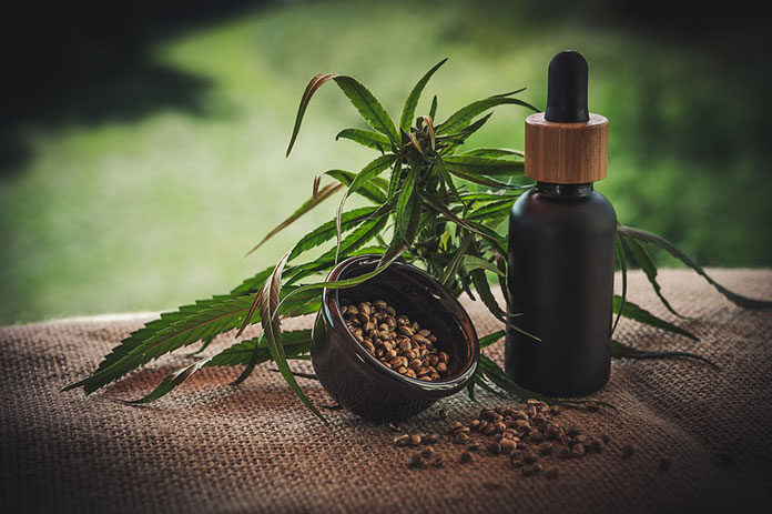Nasiona konopi i ich wykorzystanie w kosmetyce